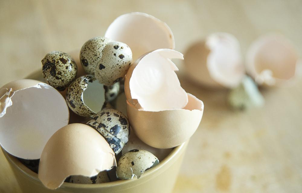 skorupki jajek w warzywniku