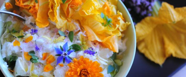 Posiej sobie bratka – kwiaty jadalne i ich smak.