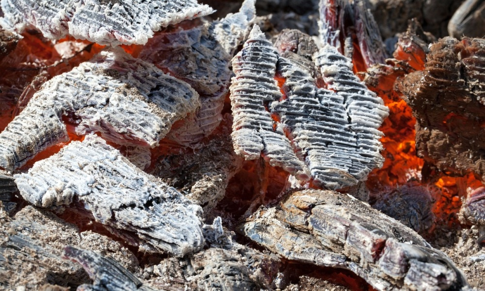 zaprawianie nasion-popiół drzewny
