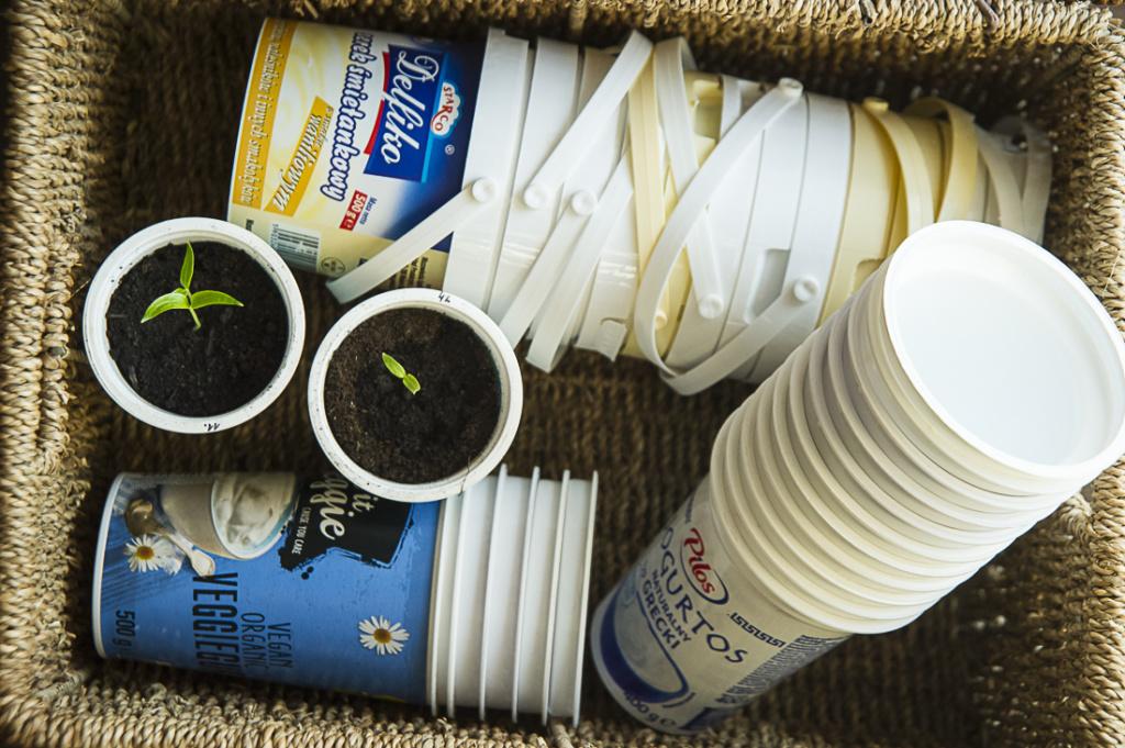 kubeczki po jogurtach na rozsady