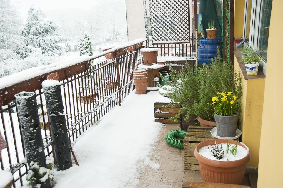 kwietniowy atak zimy