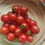 pomidor baraja