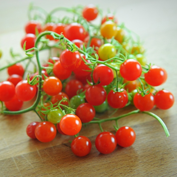 pomidor red currant