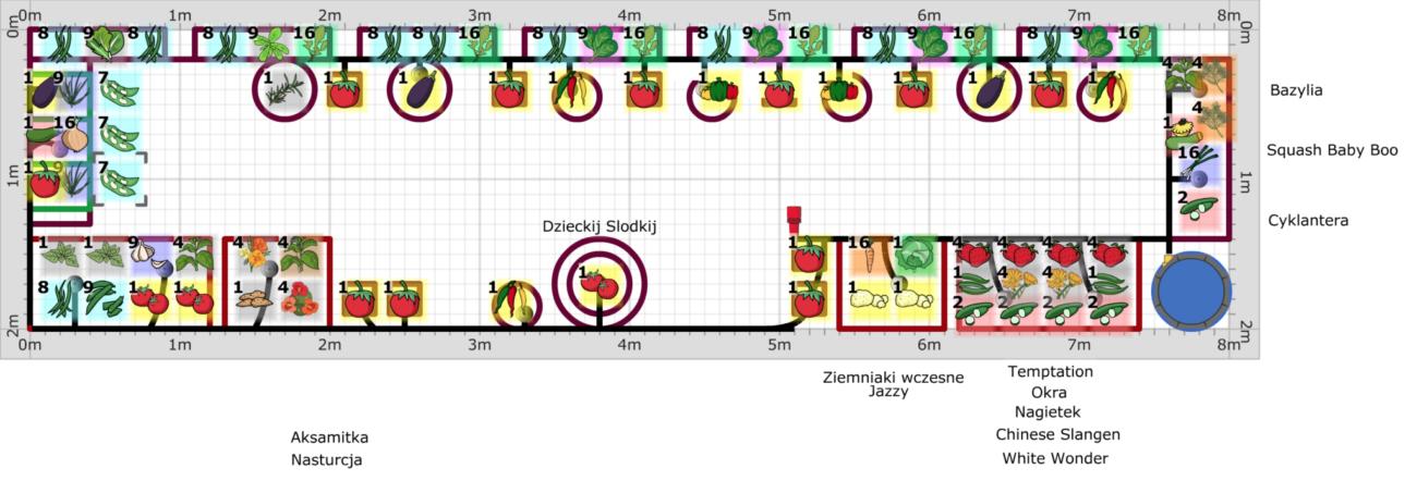 planowanie warzywnika na balkonie