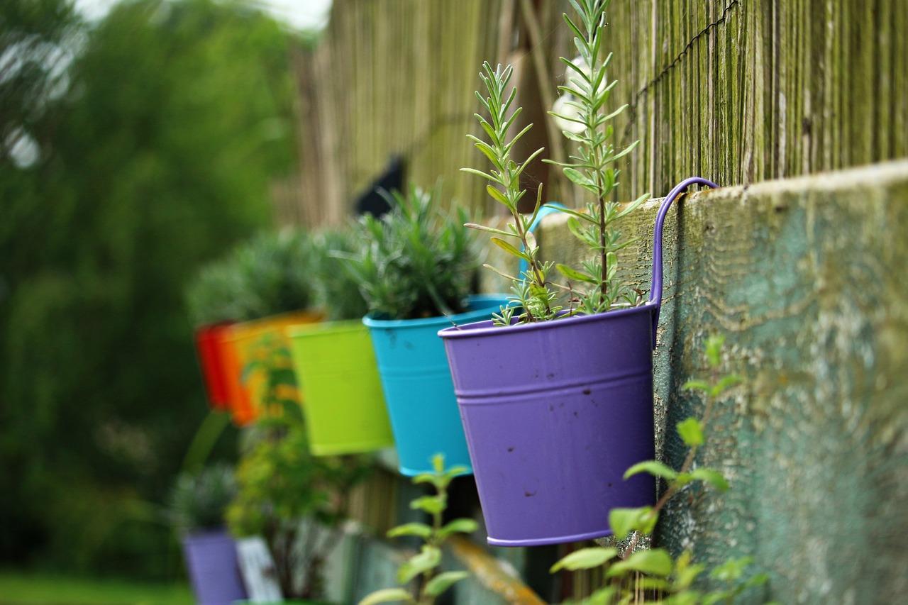 Pojemniki Do Uprawy Warzyw Na Balkonie Z Balkonu Na Talerz
