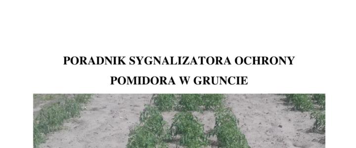 PORADNIK OCHRONY POMIDORA W GRUNCIE