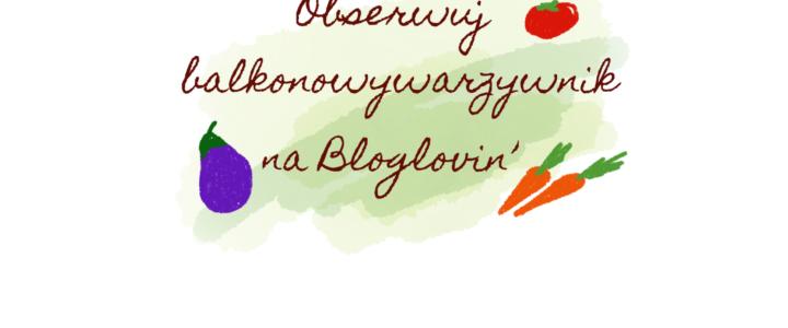 Od dziś Balkonowy Warzywnik na Bloglovin'