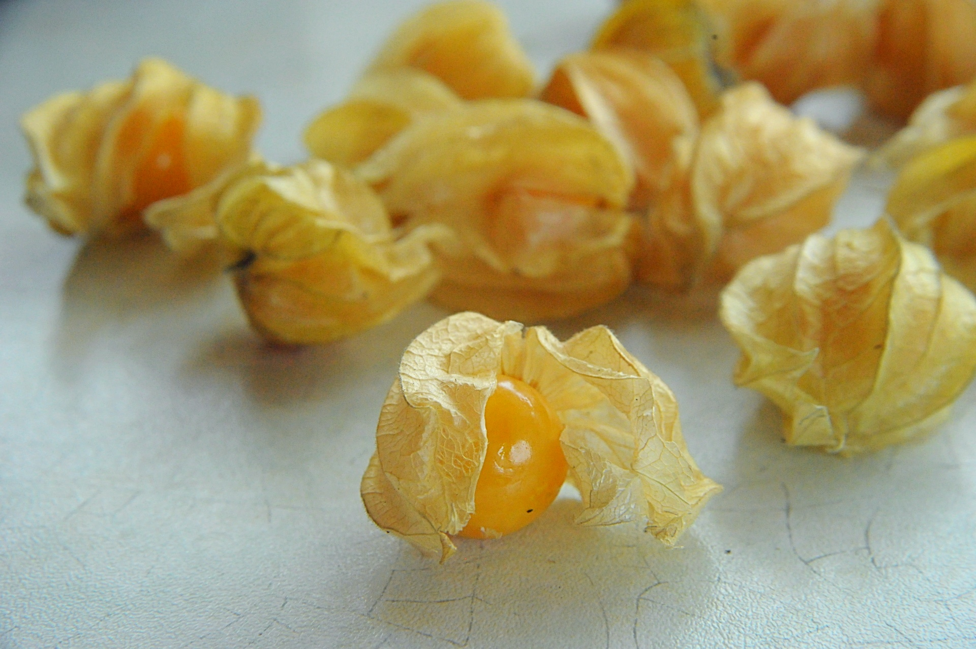 Physalis-owoc