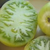 Summertime Green Dwarf