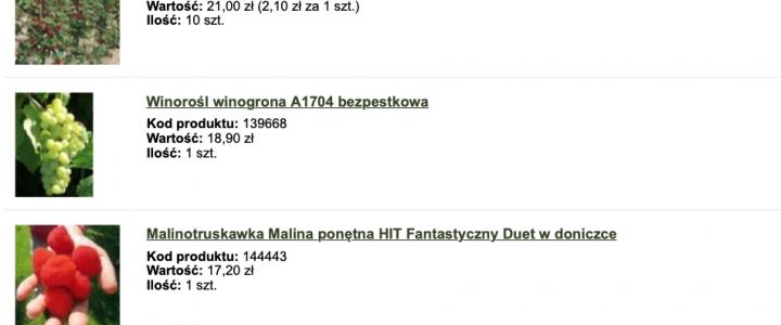 Zakupy w sadowniczy.pl