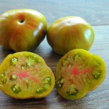 pomidor Jarson 1