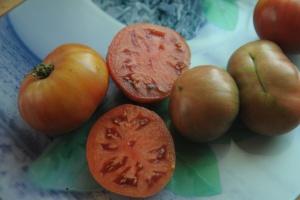 pomidor Adelaide Festival